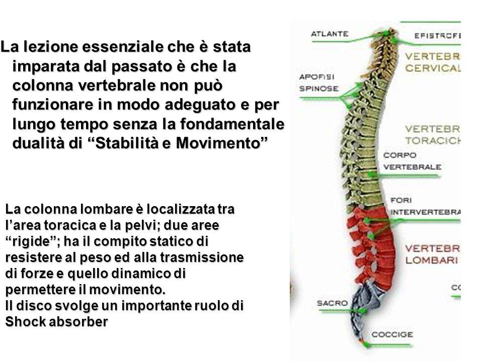 La lezione essenziale che è stata imparata dal passato è che la colonna vertebrale non può funzionare in modo adeguato e per lungo tempo senza la fondamentale dualità di Stabilità e Movimento