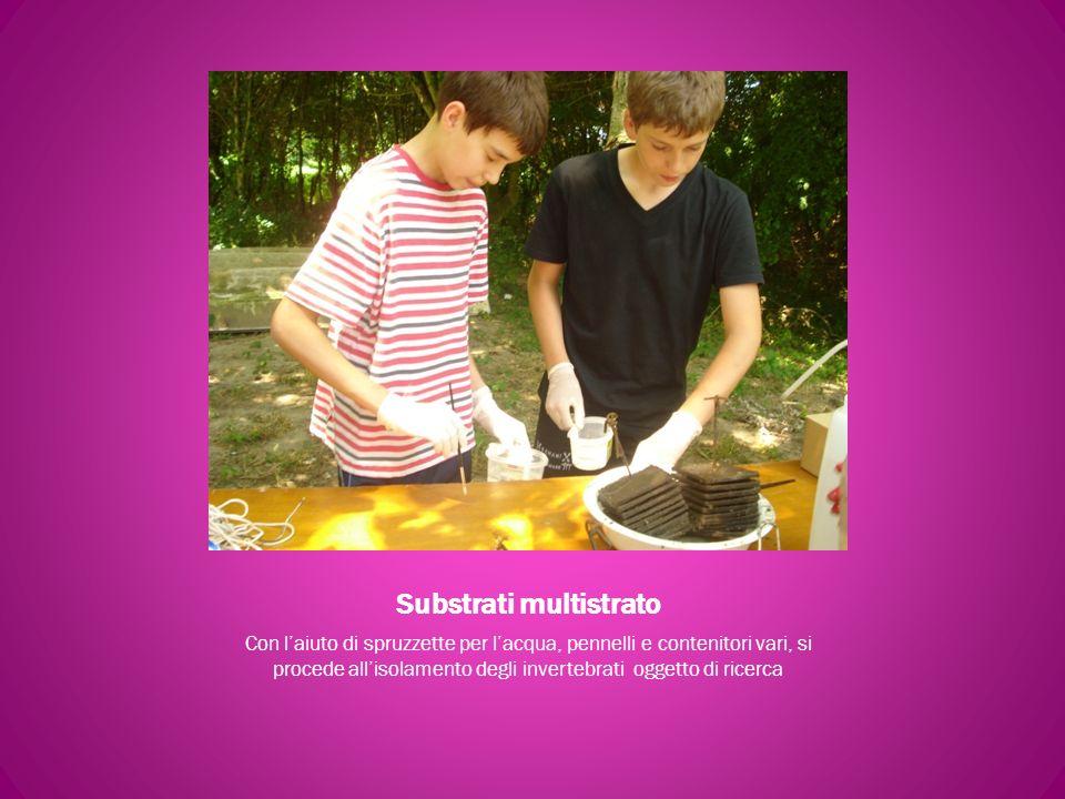 Substrati multistrato