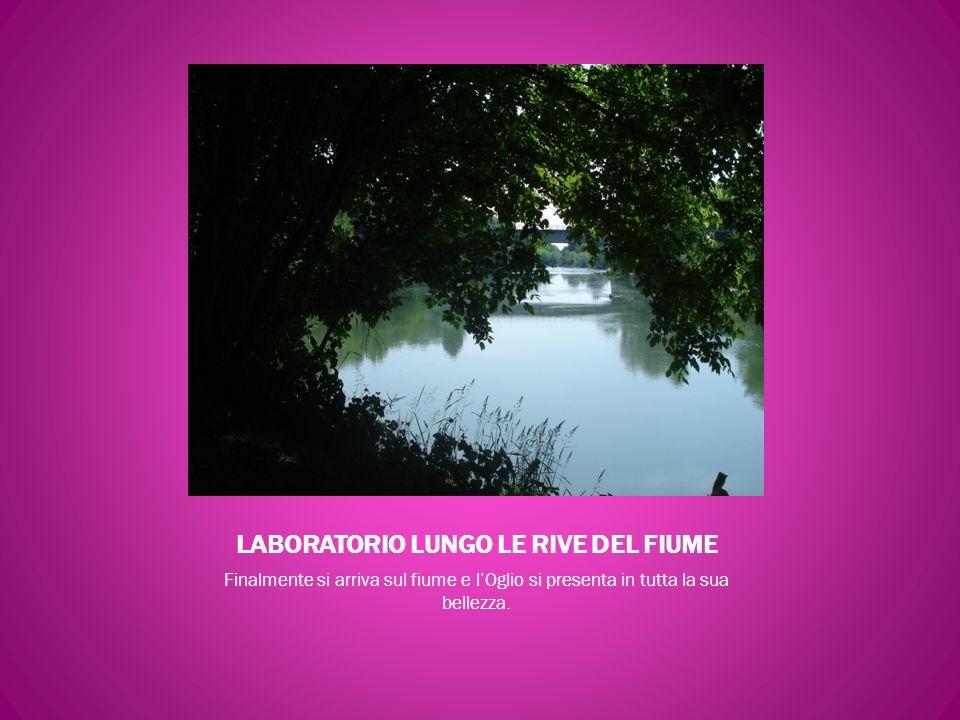 LABORATORIO LUNGO LE RIVE DEL FIUME
