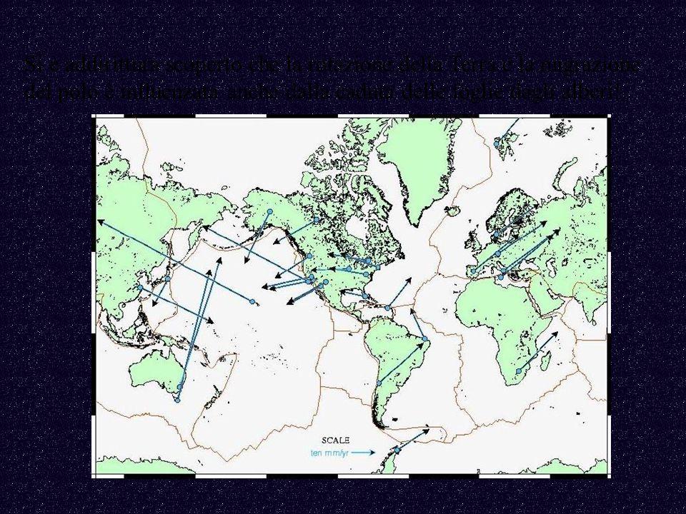 Si è addirittura scoperto che la rotazione della Terra e la migrazione del polo è influenzata anche dalla caduta delle foglie dagli alberi!