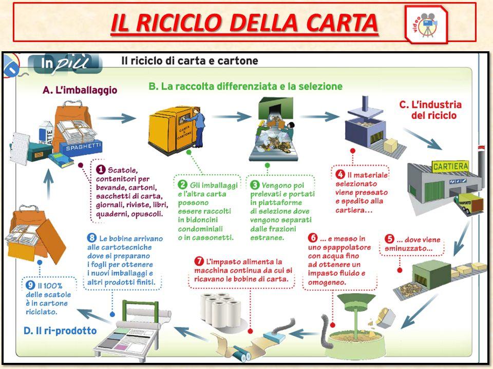 IL RICICLO DELLA CARTA