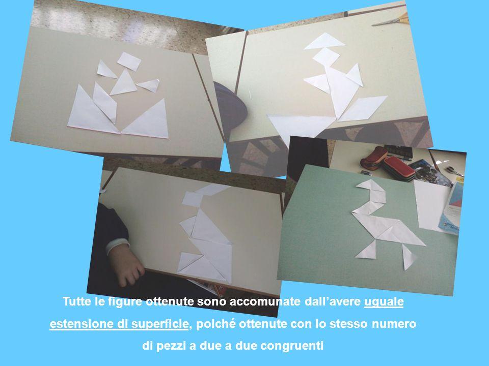 Tutte le figure ottenute sono accomunate dall'avere uguale estensione di superficie, poiché ottenute con lo stesso numero di pezzi a due a due congruenti