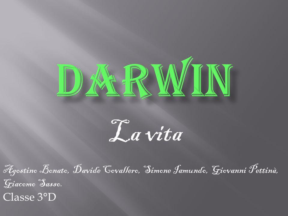 DARWIN La vita. Agostino Bonato, Davide Covallero, Simone Iamundo, Giovanni Pettinà, Giacomo Sasso.