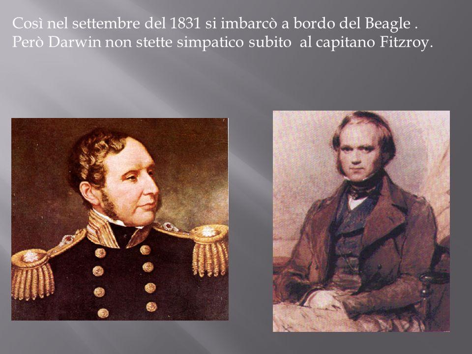 Così nel settembre del 1831 si imbarcò a bordo del Beagle