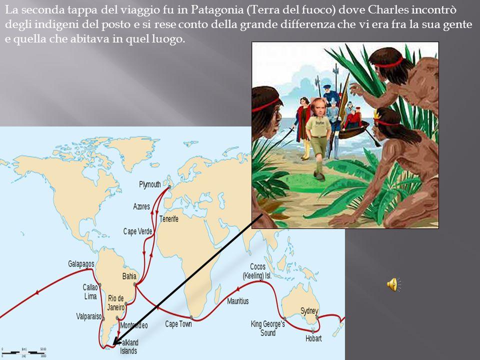 La seconda tappa del viaggio fu in Patagonia (Terra del fuoco) dove Charles incontrò degli indigeni del posto e si rese conto della grande differenza che vi era fra la sua gente e quella che abitava in quel luogo.
