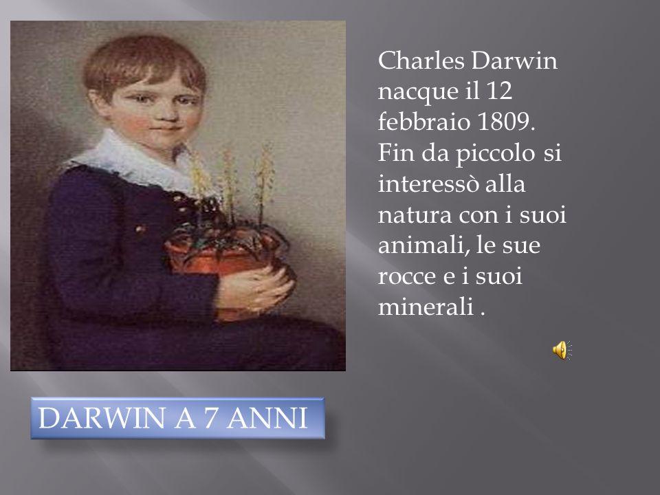 Charles Darwin nacque il 12 febbraio 1809