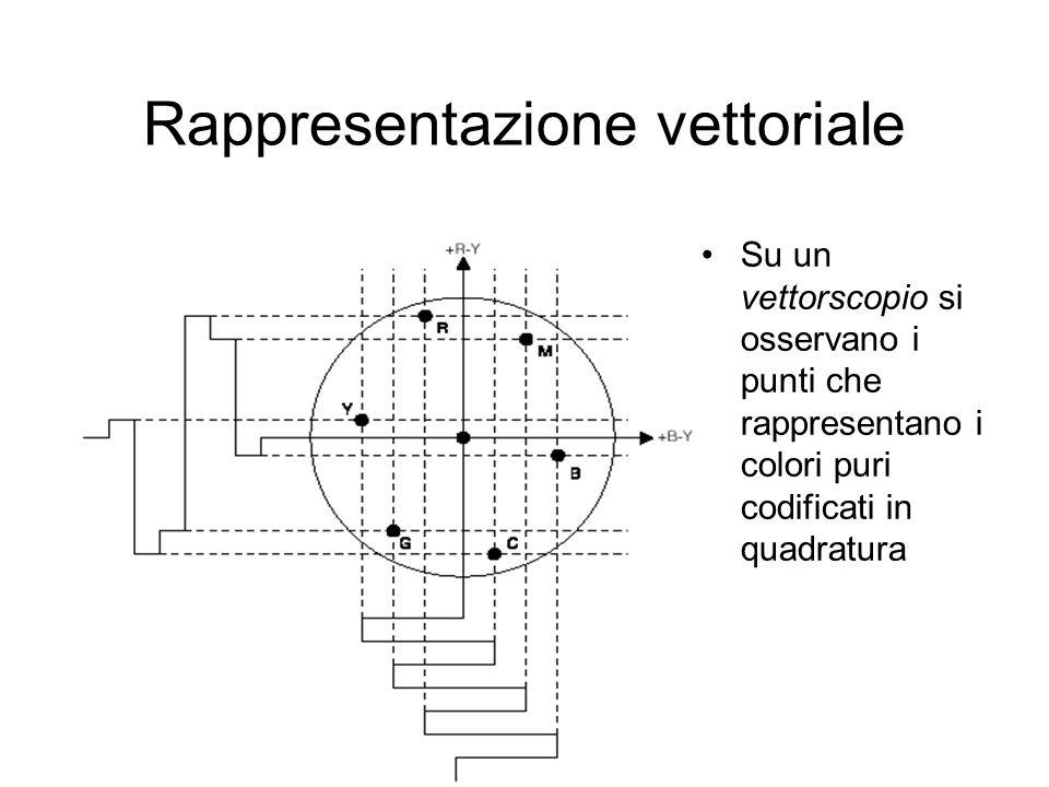 Rappresentazione vettoriale
