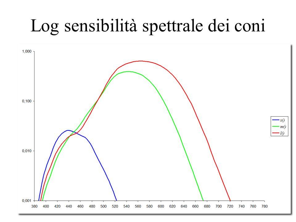 Log sensibilità spettrale dei coni