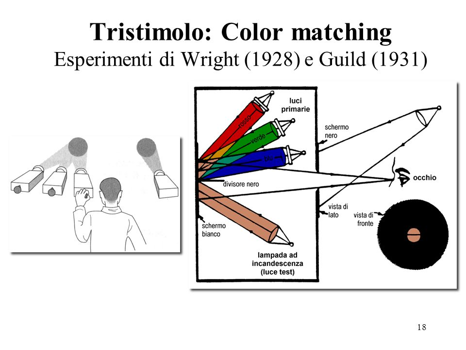 Tristimolo: Color matching Esperimenti di Wright (1928) e Guild (1931)