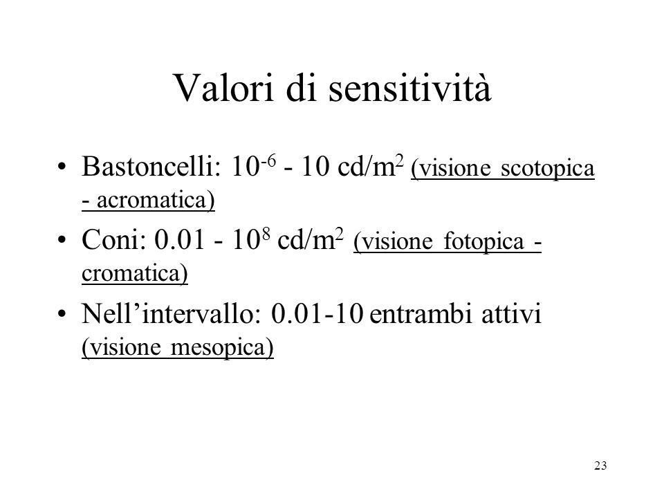 Valori di sensitività Bastoncelli: 10-6 - 10 cd/m2 (visione scotopica - acromatica) Coni: 0.01 - 108 cd/m2 (visione fotopica - cromatica)