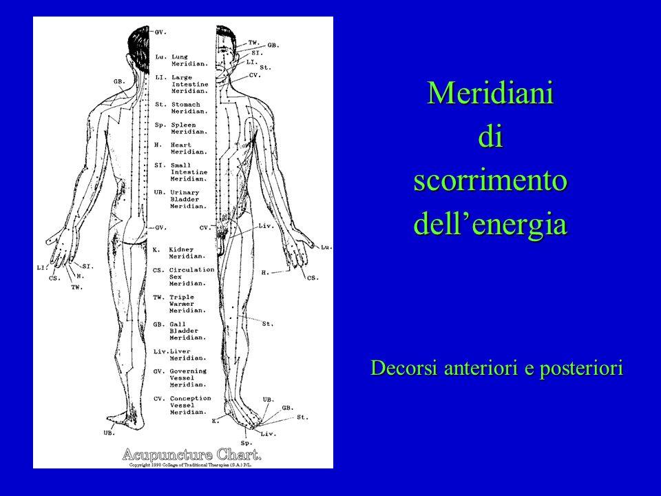 Meridiani di scorrimento dell'energia Decorsi anteriori e posteriori