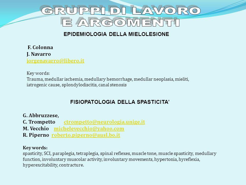 GRUPPI DI LAVORO E ARGOMENTI J. Navarro jorgenavarro@libero.it