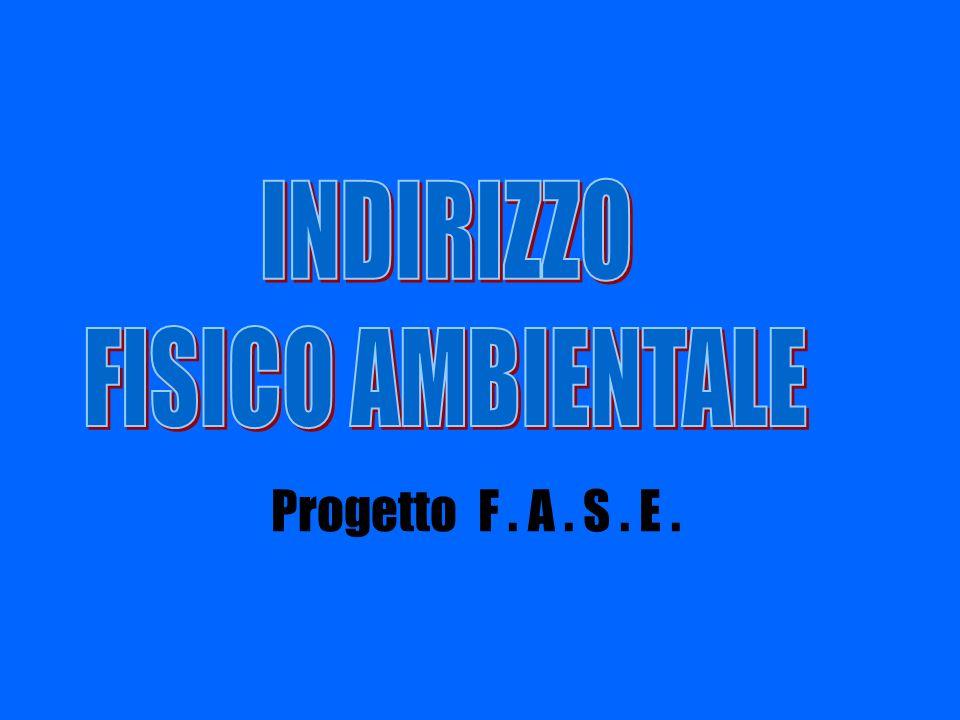 INDIRIZZO FISICO AMBIENTALE Progetto F . A . S . E .