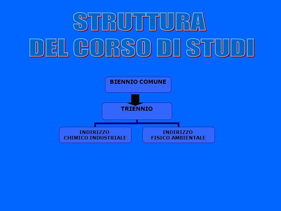 STRUTTURA DEL CORSO DI STUDI BIENNIO COMUNE