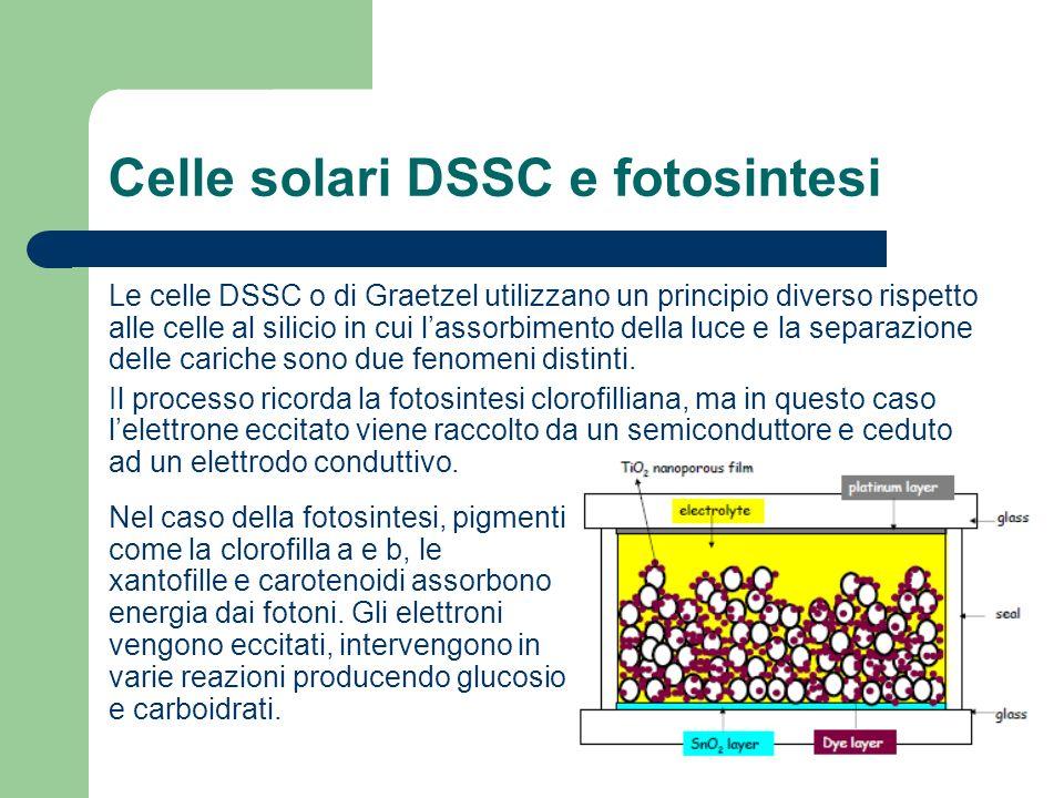 Celle solari DSSC e fotosintesi