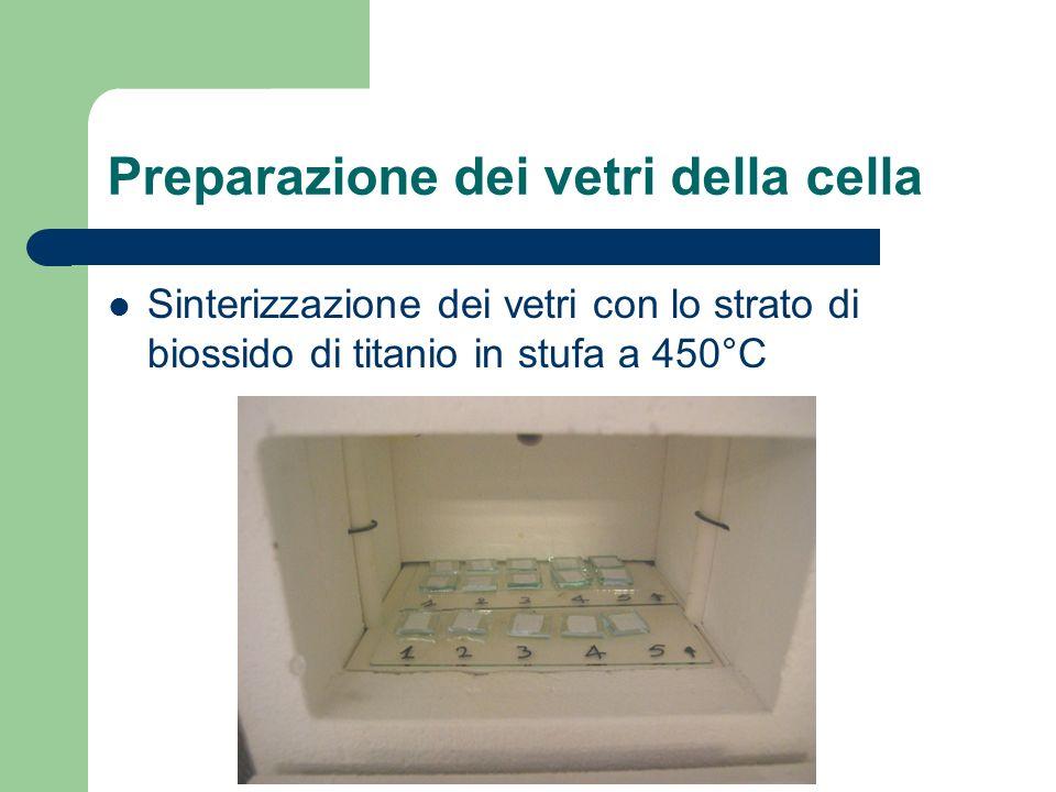 Preparazione dei vetri della cella
