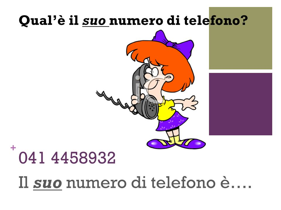 Il suo numero di telefono è….