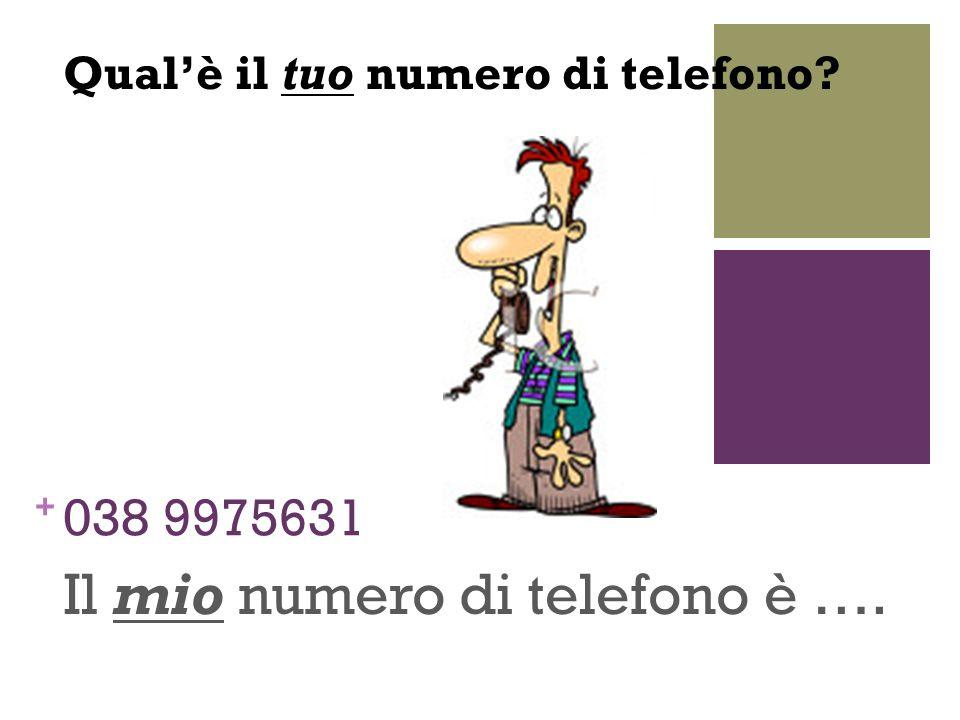 Il mio numero di telefono è ….
