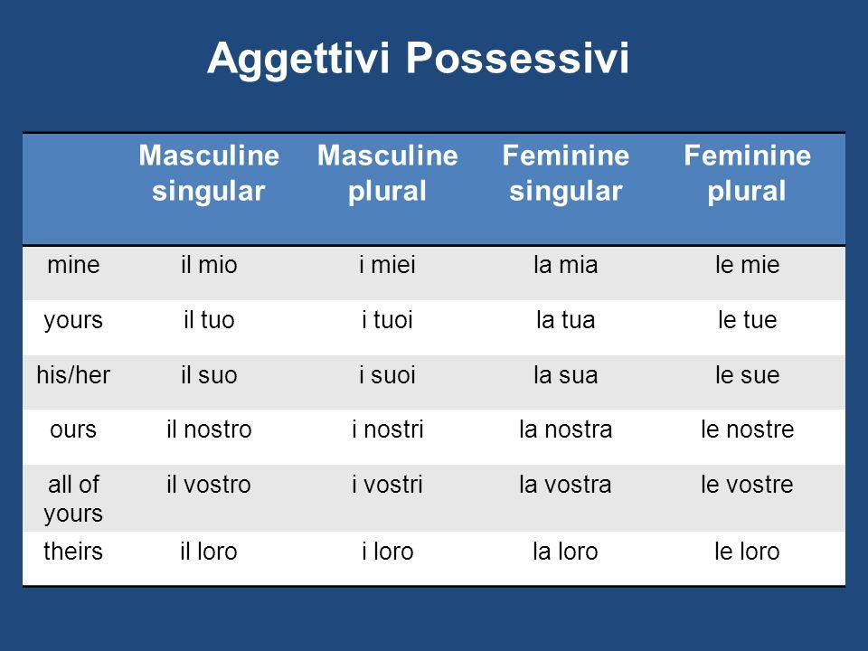 Aggettivi Possessivi Masculine singular Masculine plural