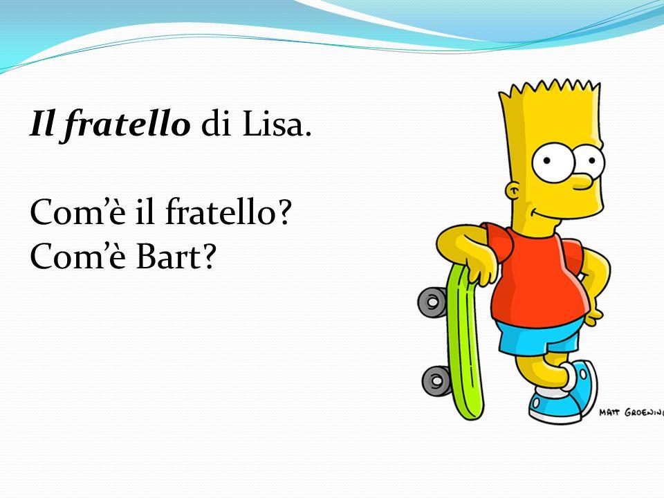 Il fratello di Lisa. Com'è il fratello Com'è Bart