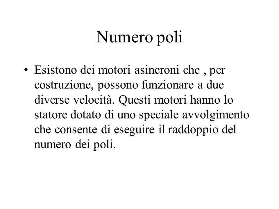 Numero poli