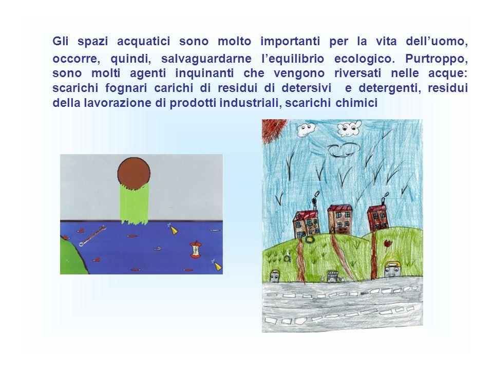 Gli spazi acquatici sono molto importanti per la vita dell'uomo, occorre, quindi, salvaguardarne l'equilibrio ecologico.