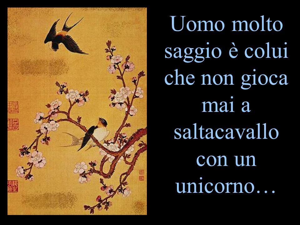 Uomo molto saggio è colui che non gioca mai a saltacavallo con un unicorno…