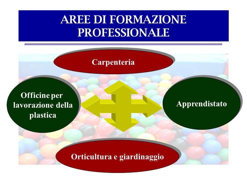 AREE DI FORMAZIONE PROFESSIONALE