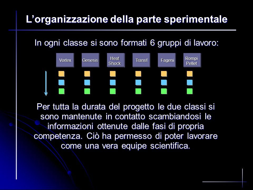 L'organizzazione della parte sperimentale