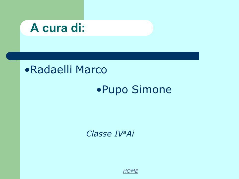 A cura di: Radaelli Marco Pupo Simone Classe IVaAi HOME