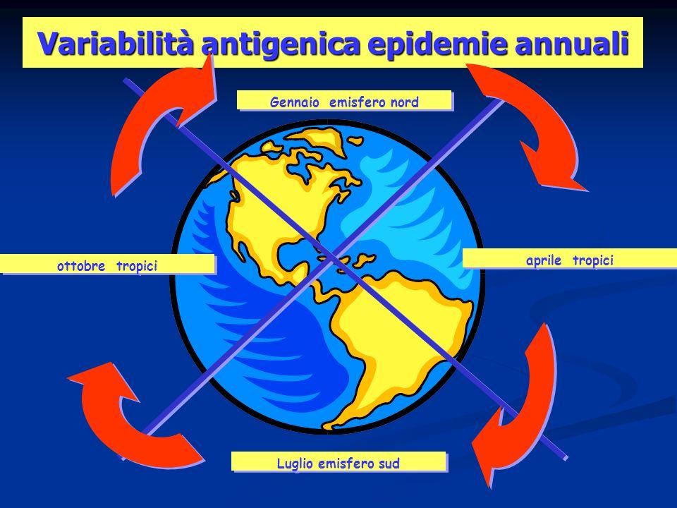 Variabilità antigenica epidemie annuali