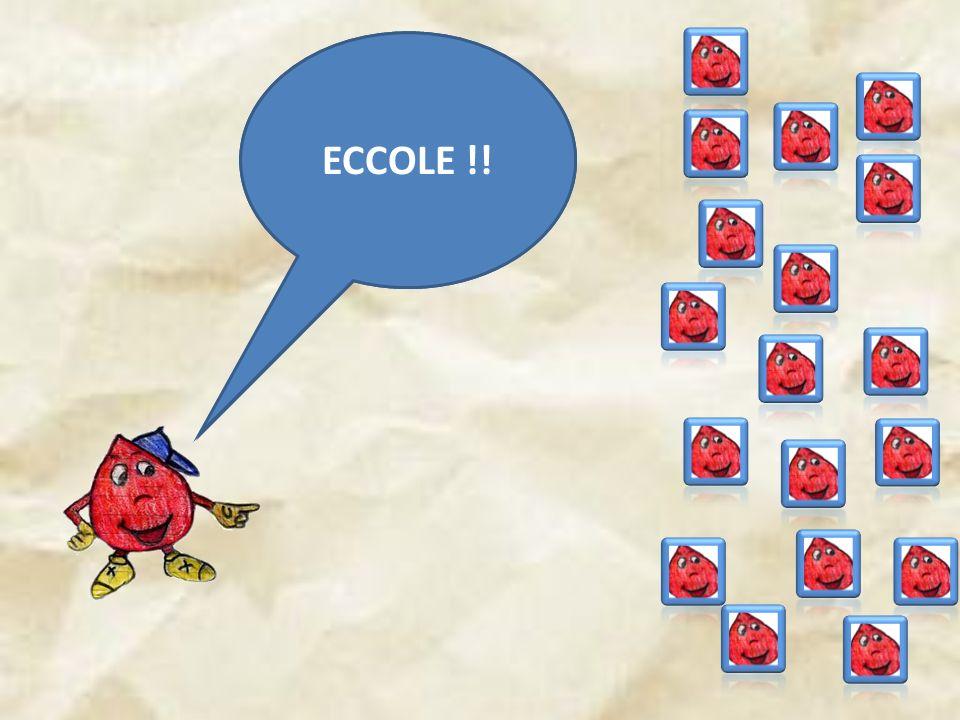 ECCOLE !! HO TANTE SORELLE