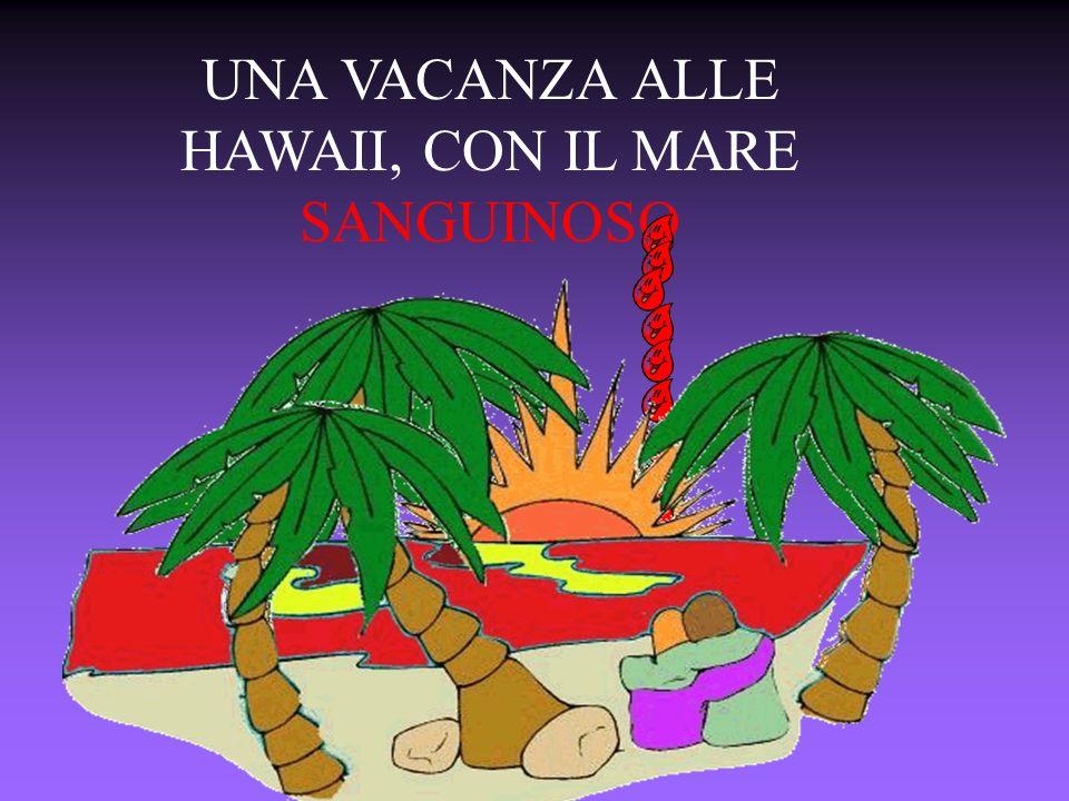UNA VACANZA ALLE HAWAII, CON IL MARE SANGUINOSO