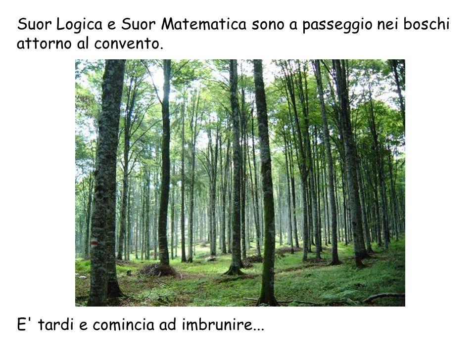 Suor Logica e Suor Matematica sono a passeggio nei boschi attorno al convento.
