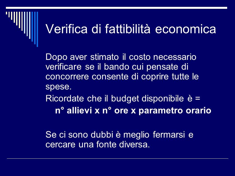 Verifica di fattibilità economica