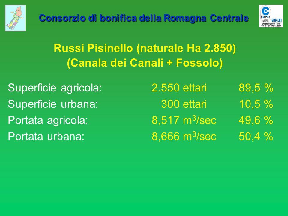 Russi Pisinello (naturale Ha 2.850) (Canala dei Canali + Fossolo)