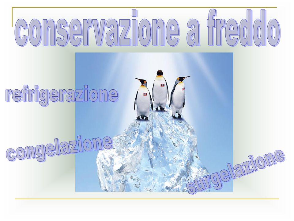 conservazione a freddo