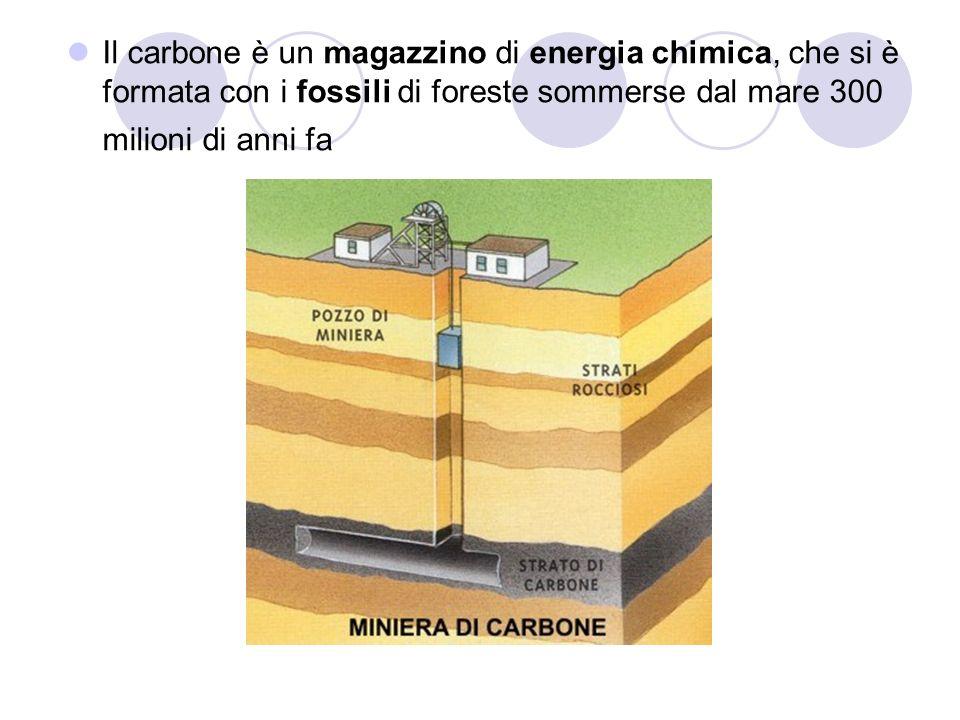 Il carbone è un magazzino di energia chimica, che si è formata con i fossili di foreste sommerse dal mare 300 milioni di anni fa