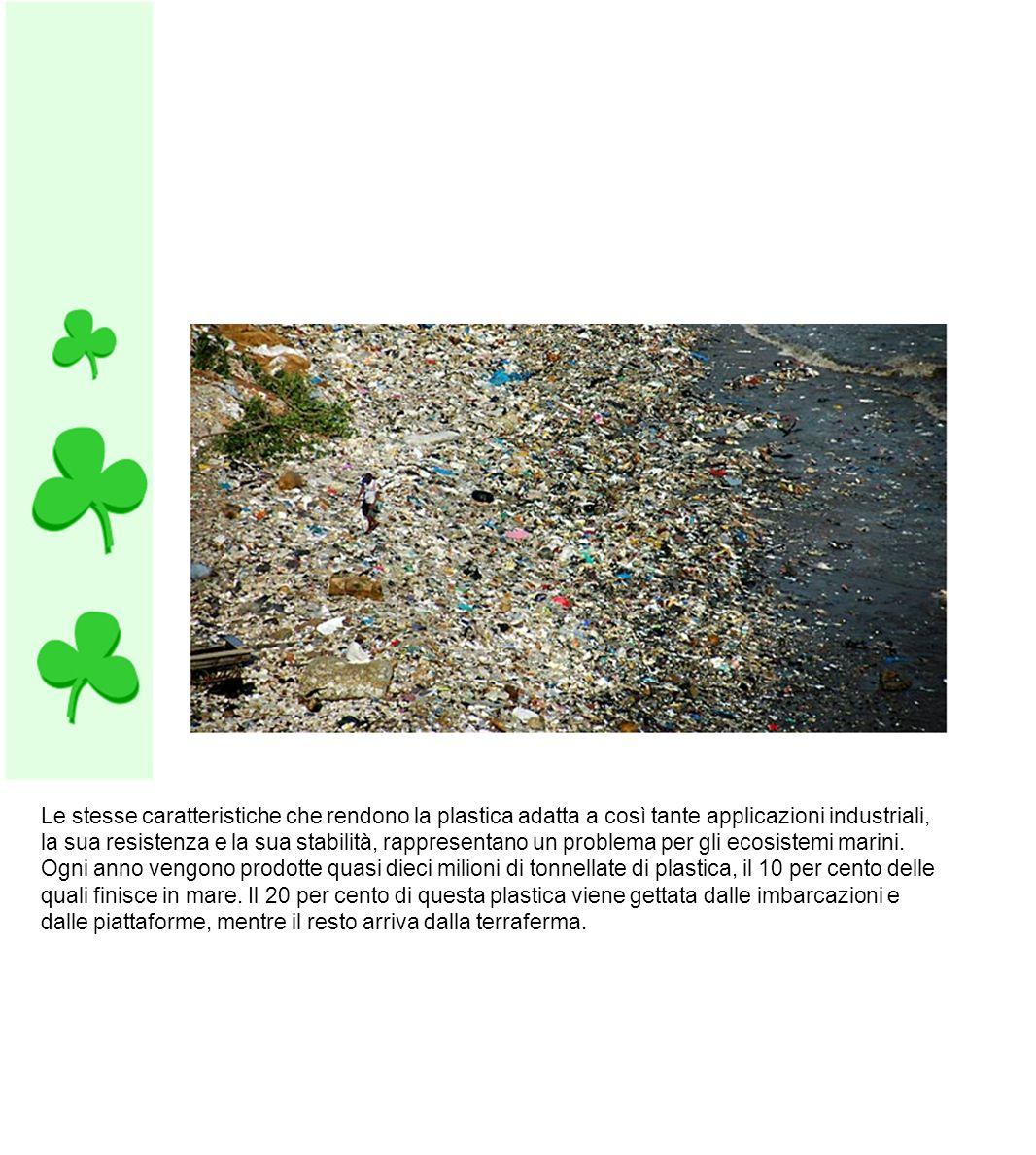 Le stesse caratteristiche che rendono la plastica adatta a così tante applicazioni industriali, la sua resistenza e la sua stabilità, rappresentano un problema per gli ecosistemi marini.