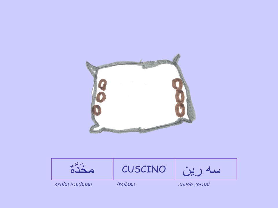 مخَدَّة CUSCINO سه رين arabo iracheno italiano curdo sorani