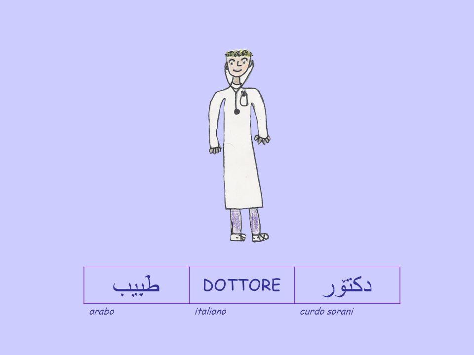 طَبِيب DOTTORE دكتۆر arabo italiano curdo sorani