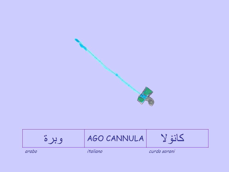 وبرة AGO CANNULA كانۆلا arabo italiano curdo sorani
