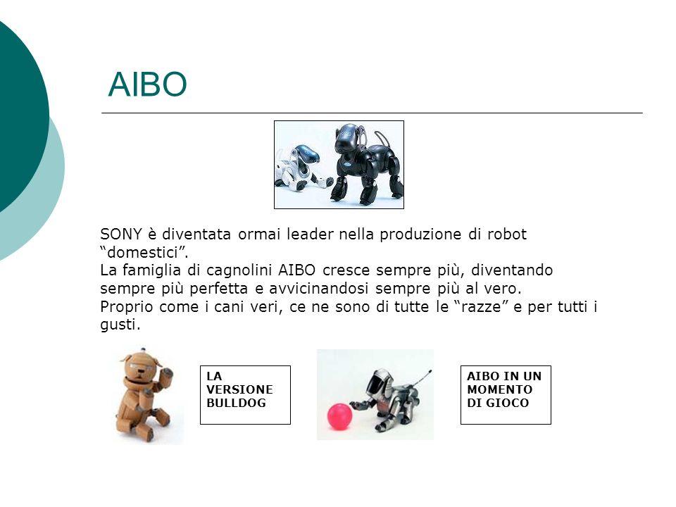 AIBO SONY è diventata ormai leader nella produzione di robot domestici .