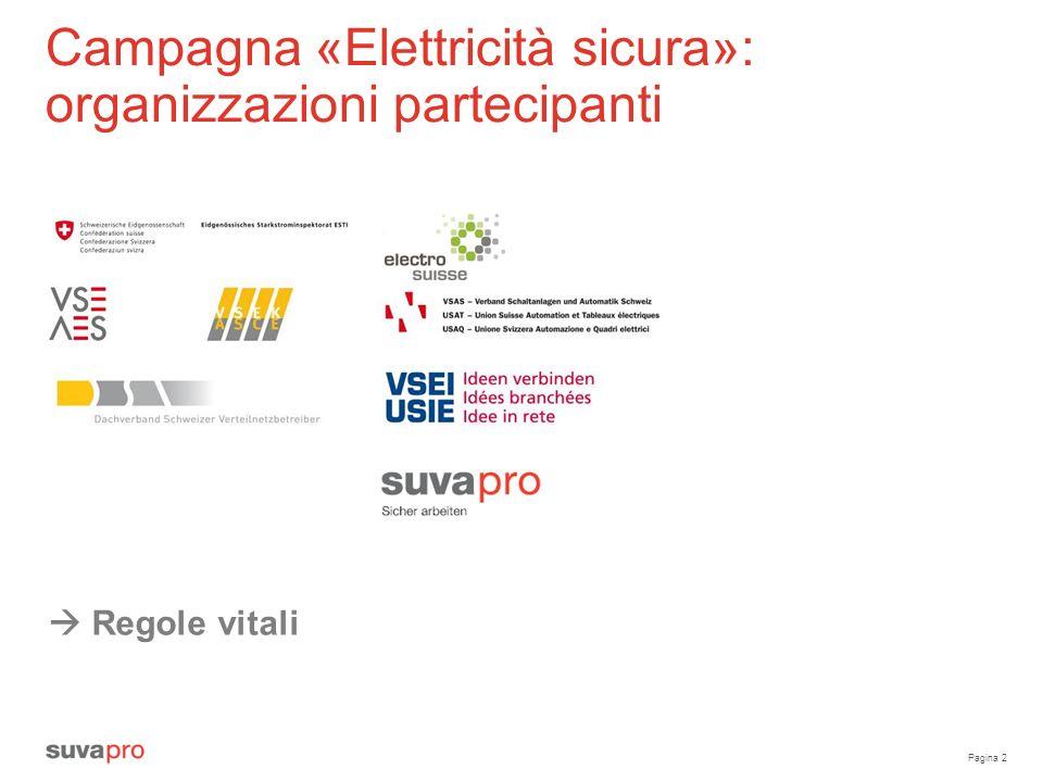 Campagna «Elettricità sicura»: organizzazioni partecipanti