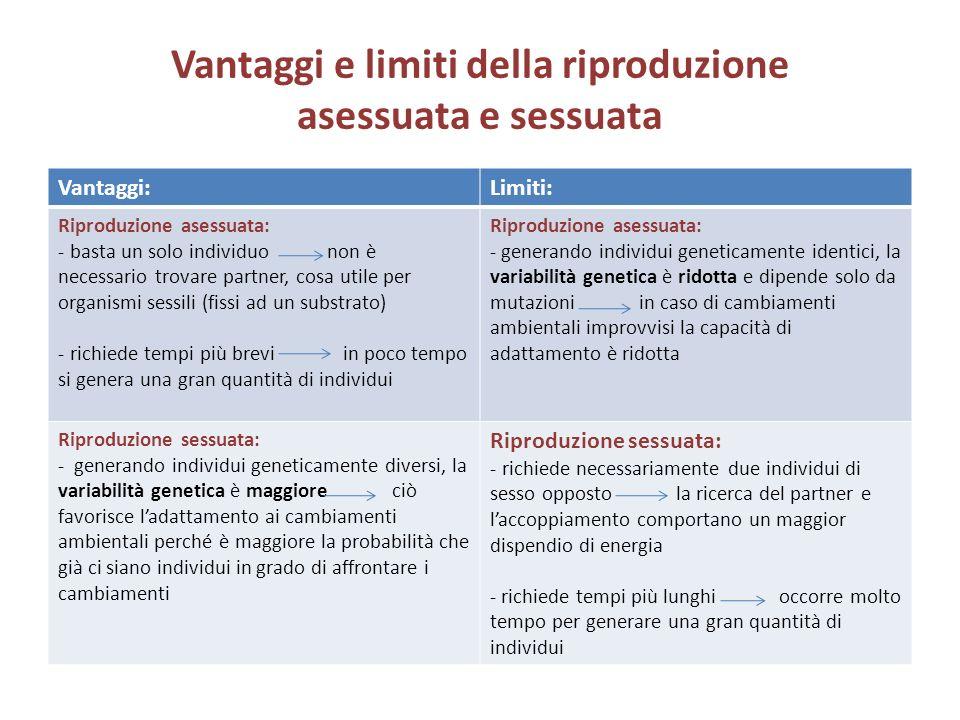 Vantaggi e limiti della riproduzione asessuata e sessuata