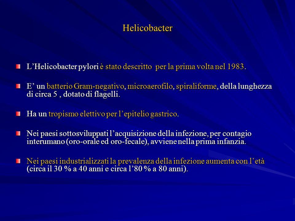 Helicobacter L'Helicobacter pylori è stato descritto per la prima volta nel 1983.