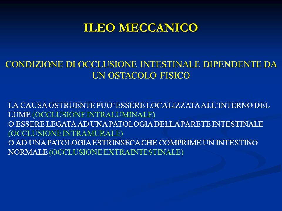 CONDIZIONE DI OCCLUSIONE INTESTINALE DIPENDENTE DA UN OSTACOLO FISICO