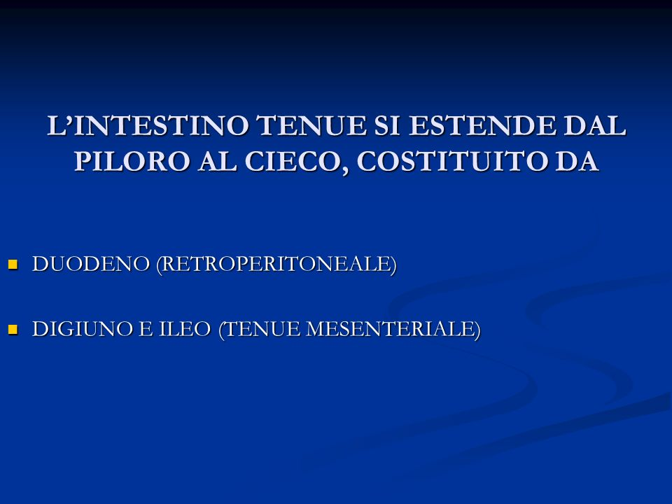 L'INTESTINO TENUE SI ESTENDE DAL PILORO AL CIECO, COSTITUITO DA