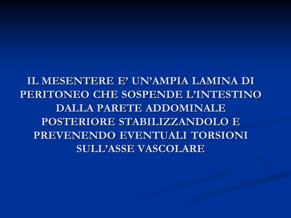 IL MESENTERE E' UN'AMPIA LAMINA DI PERITONEO CHE SOSPENDE L'INTESTINO DALLA PARETE ADDOMINALE POSTERIORE STABILIZZANDOLO E PREVENENDO EVENTUALI TORSIONI SULL'ASSE VASCOLARE