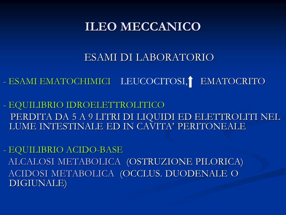 ILEO MECCANICO ESAMI DI LABORATORIO